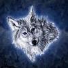 frostwolf93